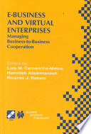 E Business and Virtual Enterprises