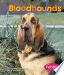 Bloodhounds How To Care For Them Provided By Publisher