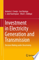 Investment In Electricity Generation And Transmission