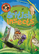 Nature Detective  British Insects