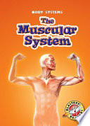 Muscular System  The