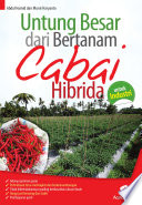Untung Besar dari Bertanam Cabai Hibrida