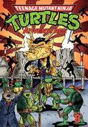 Teenage Mutant Ninja Turtles Adventures : sees the group travel to...