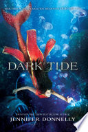 Waterfire Saga  Book Three  Dark Tide