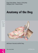 Anatomy of the Dog