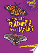 Can You Tell a Butterfly from a Moth? Plant It Waves Its Antennas And Sips