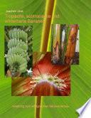 Tropische  subtropische und winterharte Bananen