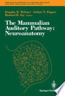 The Mammalian Auditory Pathway  Neuroanatomy