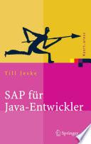 Sap F R Java Entwickler