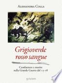Grigioverde rosso sangue  Combattere e morire nella Grande Guerra del 15 18