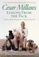 Cesar Millan s Lessons From the Pack
