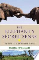 The Elephant s Secret Sense