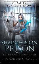 Shadowborn Prison