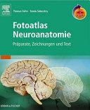Fotoatlas Neuroanatomie