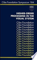 Higher Order Processing in the Visual System