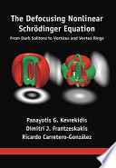 The Defocusing Nonlinear Schr Dinger Equation