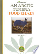 An Arctic Tundra Food Chain Up The Arctic Tundra Food Chain Including The