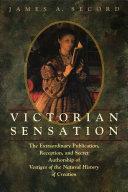 download ebook victorian sensation pdf epub