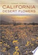 California Desert Flowers
