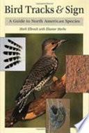 Bird Tracks & Sign