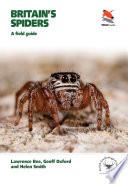 Britain s Spiders