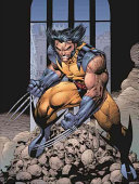 Essential Wolverine 2 : truth about his past and struggles to...