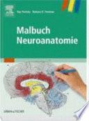 Malbuch Neuoanatomie