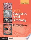 Silva S Diagnostic Renal Pathology