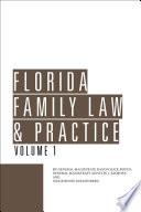 Florida Family Law   Practice