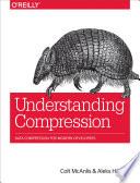 Understanding Compression