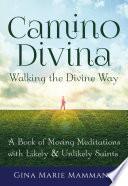 Camino Divina   Walking the Divine Way
