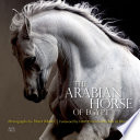 The Arabian Horse of Egypt