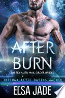 After Burn  Big Sky Alien Mail Order Brides  4  Intergalactic Dating Agency