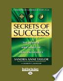 Secrets of Success  Large Print