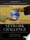 The Network Challenge Chapter 12