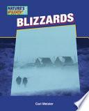 Blizzards Book PDF