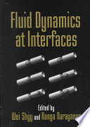 Fluid Dynamics at Interfaces