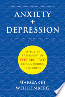 Anxiety Depression Effective Treatment Of The Big Two Co Occurring Disorders