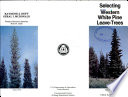 Selecting Western White Pine Leave trees