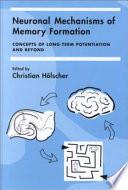 Neuronal Mechanisms Of Memory Formation book