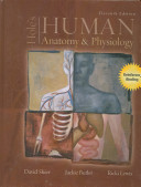 Hole s Human Anatomy   Physiology