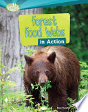 Forest Food Webs In Action