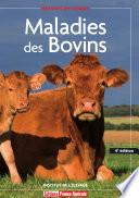Maladies des Bovins