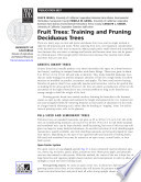 Fruit Trees  Training and Pruning Deciduous Trees