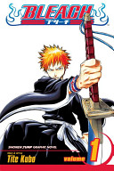Bleach, Vol. 1 (Library Edition) by Tite Kubo