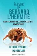 illustration Élever un Bernard L'hermite