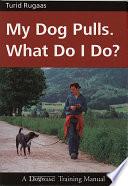 My Dog Pulls  What Do I Do