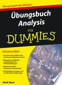 Übungsbuch Analysis für Dummies