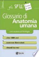 Glossario di anatomia umana (con nozioni di fisiologia)