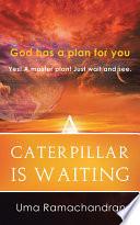 A Caterpillar Is Waiting